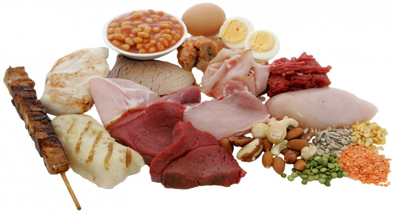 Picky about Protein